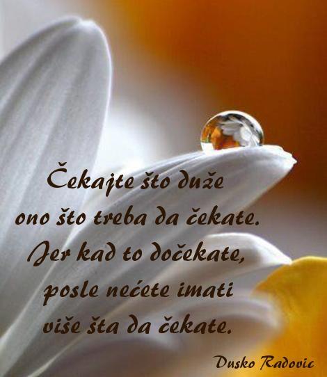 Zivotne  mudrosti i  lepe  reci  Duska Radovica - Page 7 Omauukv7ni