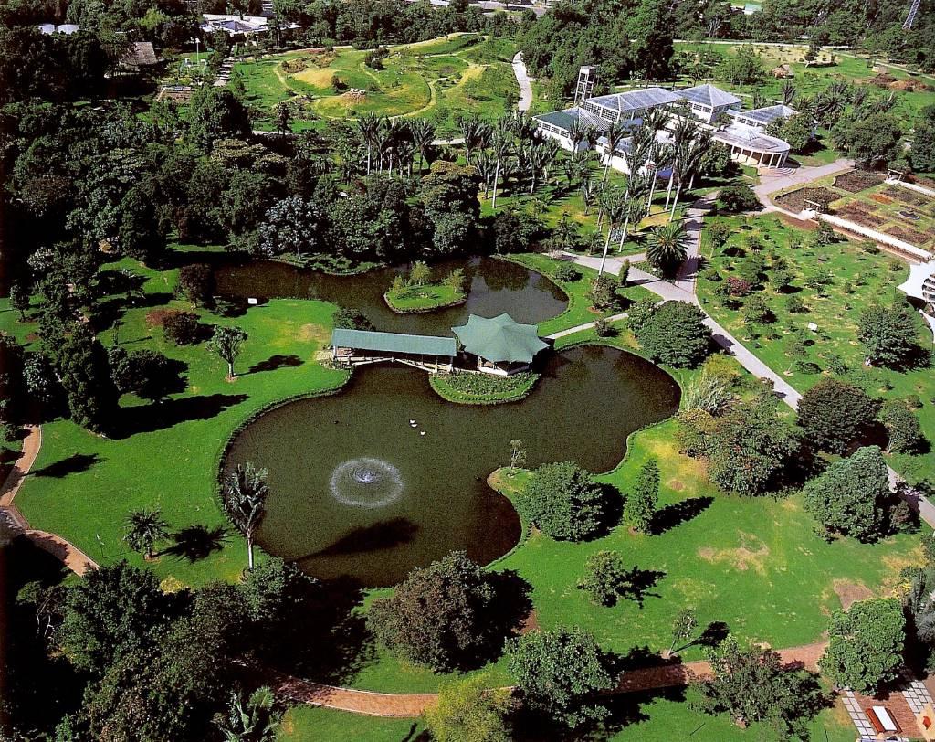 ABC MATINAL - Portal Jardinbotanicojosecelestinomut