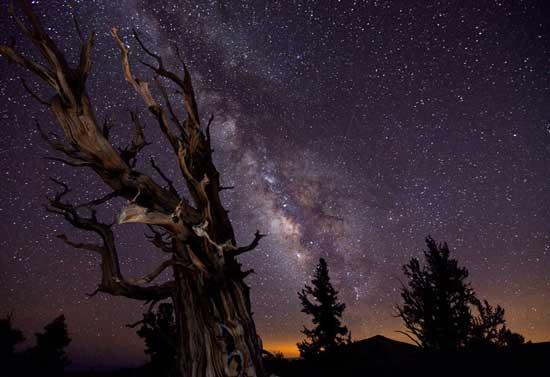 Cuộc thi Ảnh thiên văn  2010 85342682