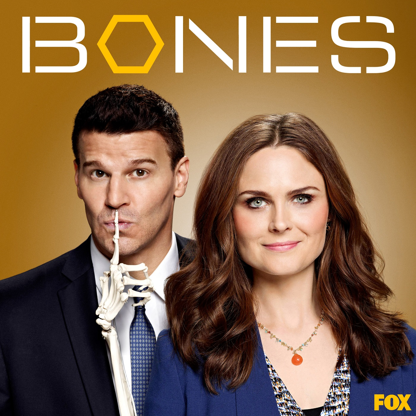 Bones Seasons 01-10   S010E01-E10 HDTV   720P Ibt9