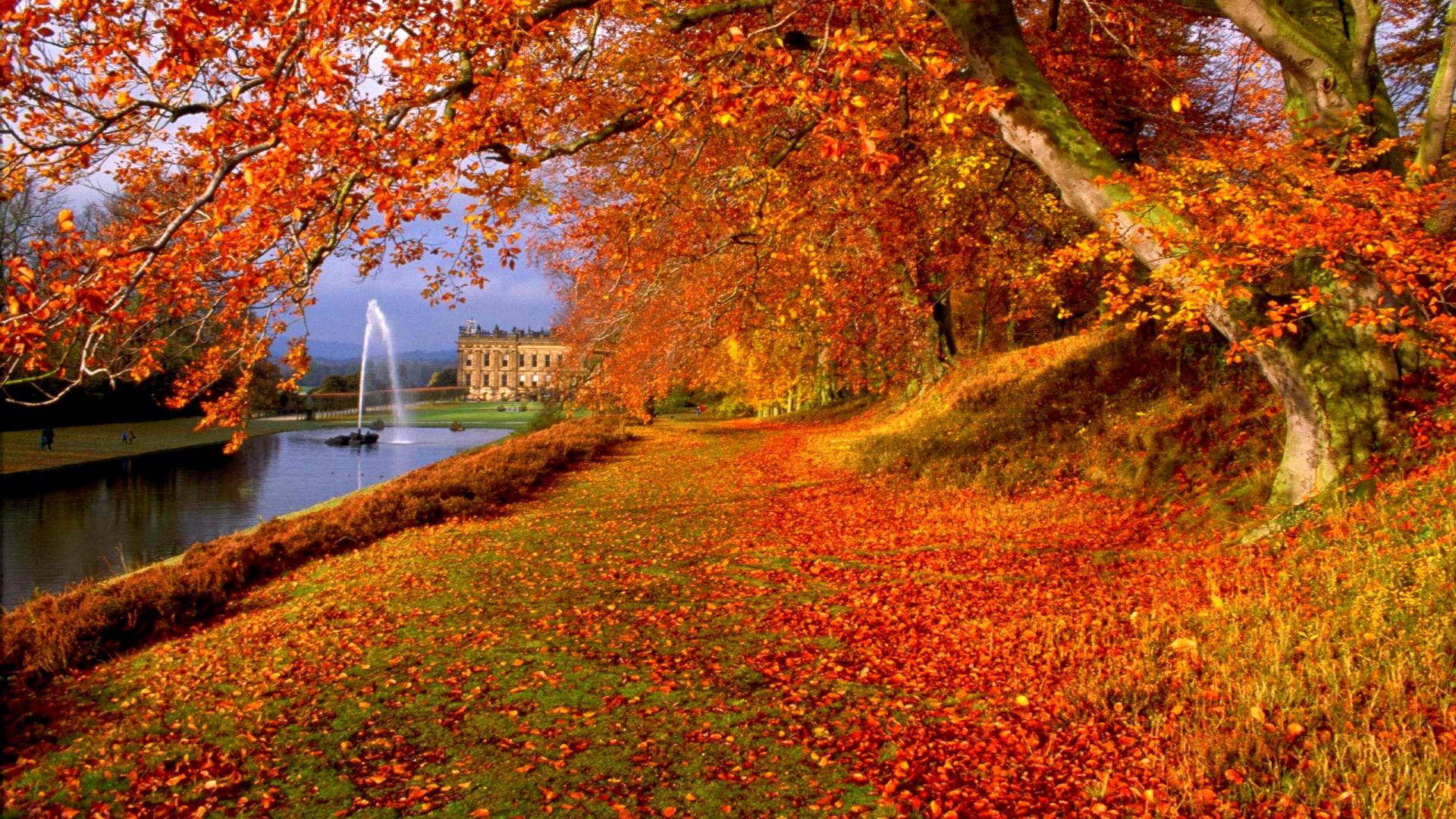 Hình nền mùa thu Autumnbeauty21a