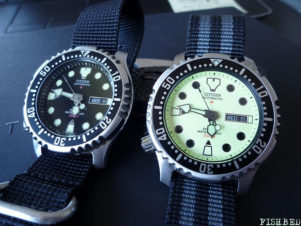 choix difficile  orient  mako  vs seiko  diver's 200 Citizenny004005