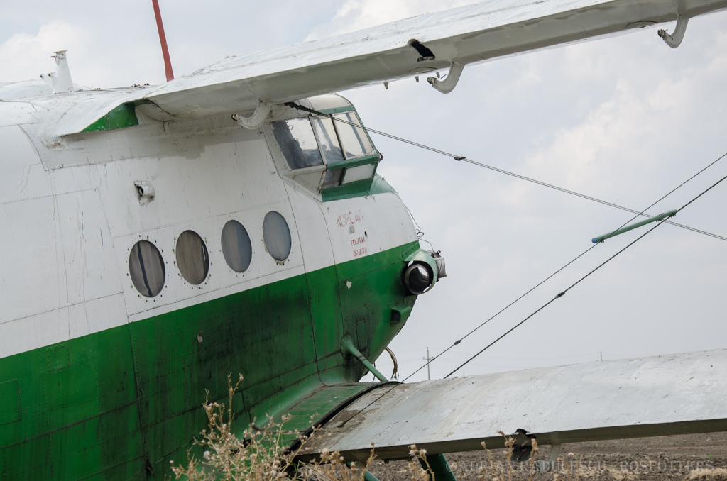 Antonov An-2 - Pagina 24 F1um