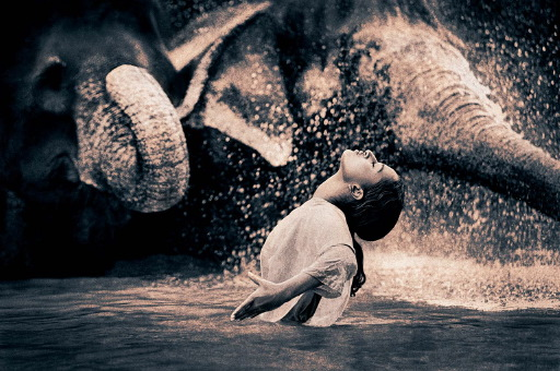 Ashes and Snow de Gregory Colbert Image17kb