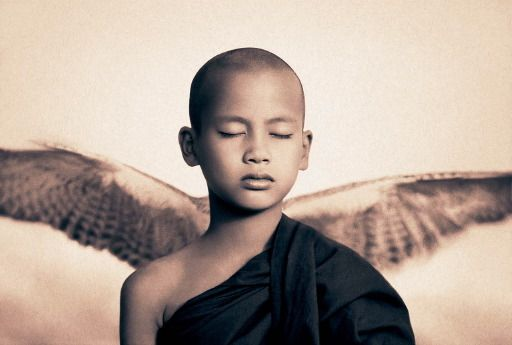 Ashes and Snow de Gregory Colbert Image11xk
