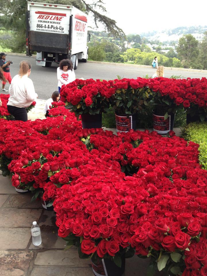 Oltre 13.000 rose per Michael al Forest Lawn 3rms