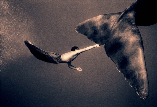 Ashes and Snow de Gregory Colbert Image10wi