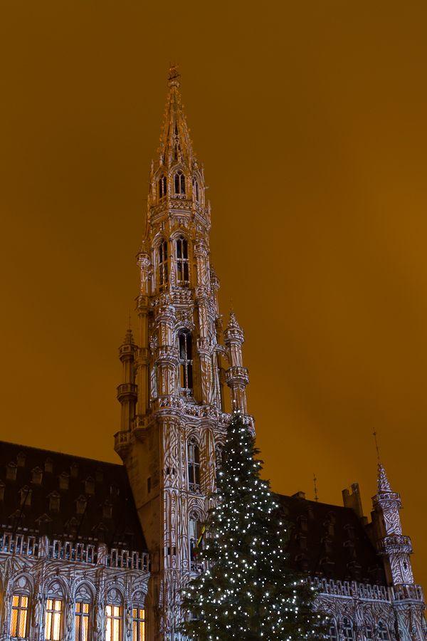 sortie Bruxelles le samedi 11 décembre: les photos  Mg2104201012117d