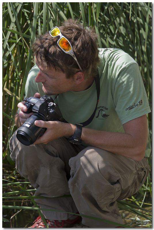 Photos de la Rencontre Macro Papillons & Libellules du Sud 2011 (21 & 22 Mai) - Page 24 Jp062041024