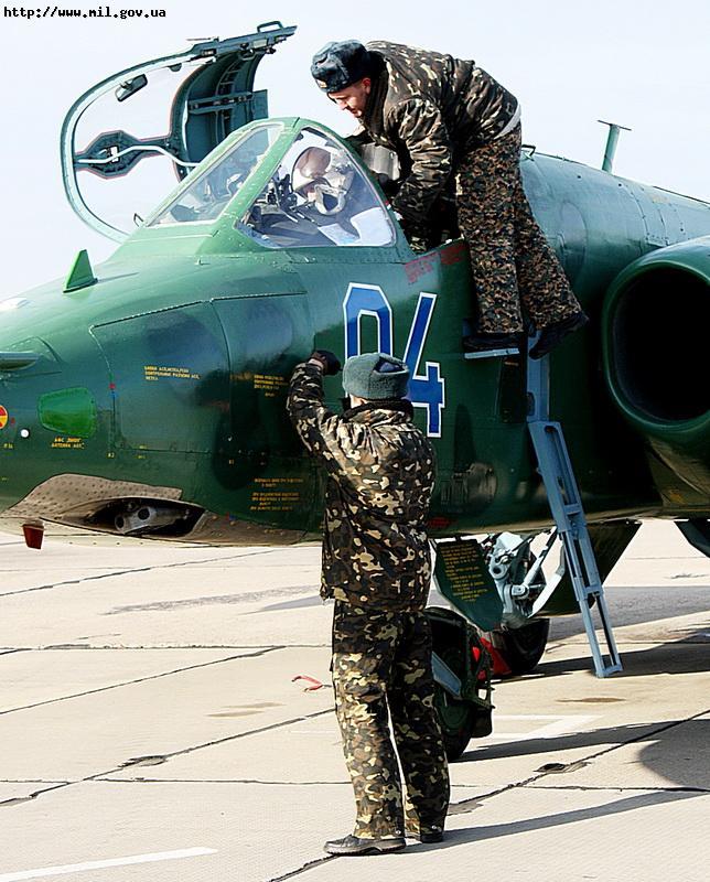 Ukrainian Armed Forces / Zbroyni Syly Ukrayiny - Page 2 20111129699831184
