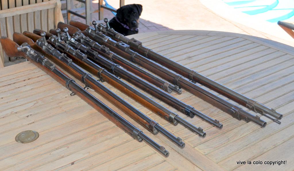Mauser 71 transformé Daudeteau Dsc0983l