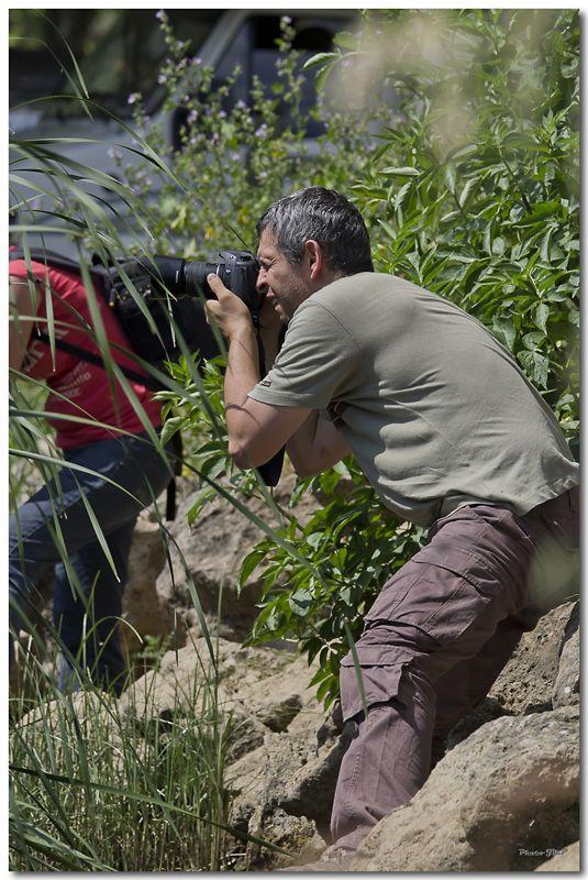 Photos de la Rencontre Macro Papillons & Libellules du Sud 2011 (21 & 22 Mai) - Page 24 Jp062081024