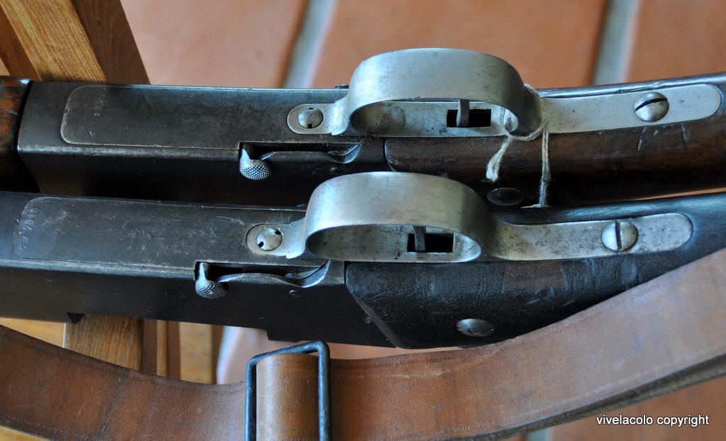 Fusil modèle 1886/93 Lebel - Page 2 Dsc0099dn