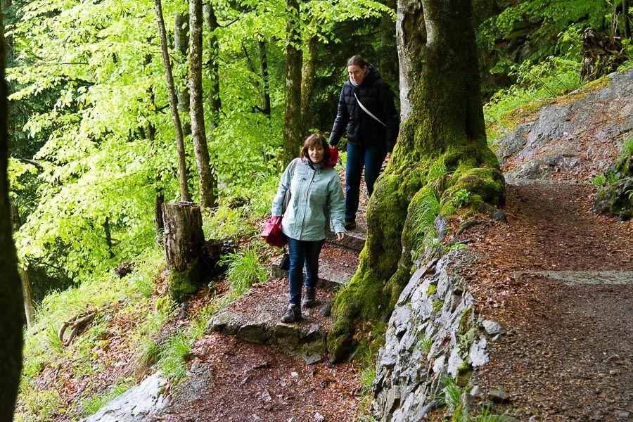 WK en Forêt Noire les 18, 19 et 20 mai 2013 : Les photos d'ambiances Mg4512201305197d
