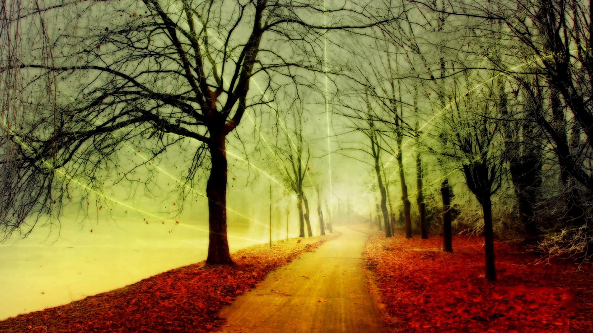 Hình nền mùa thu Autumn15b