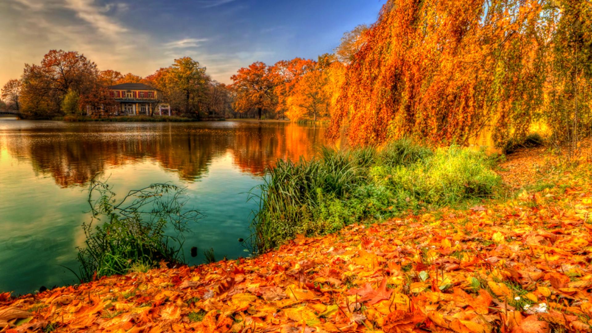 Hình nền mùa thu Autumn11c2