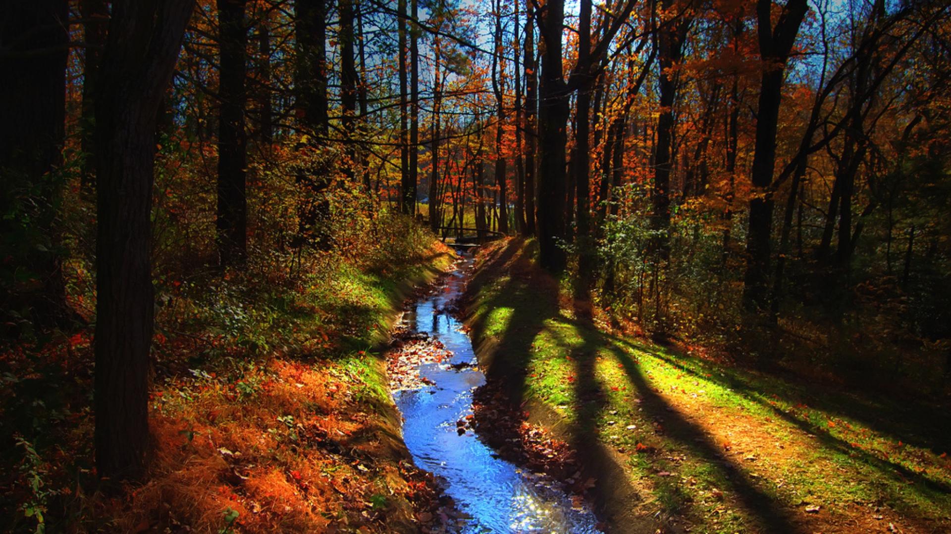 Hình nền mùa thu Autumn11a