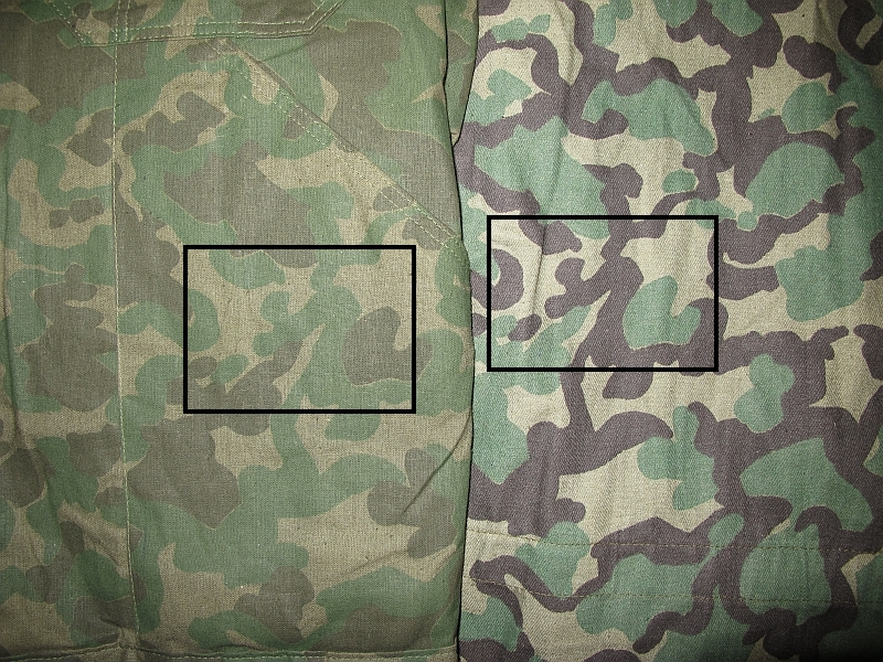 camouflage Picture1479