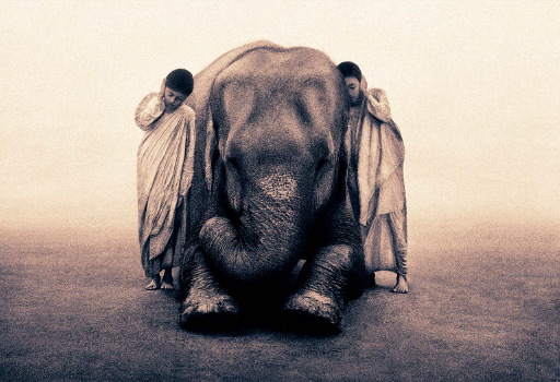Ashes and Snow de Gregory Colbert Image04b