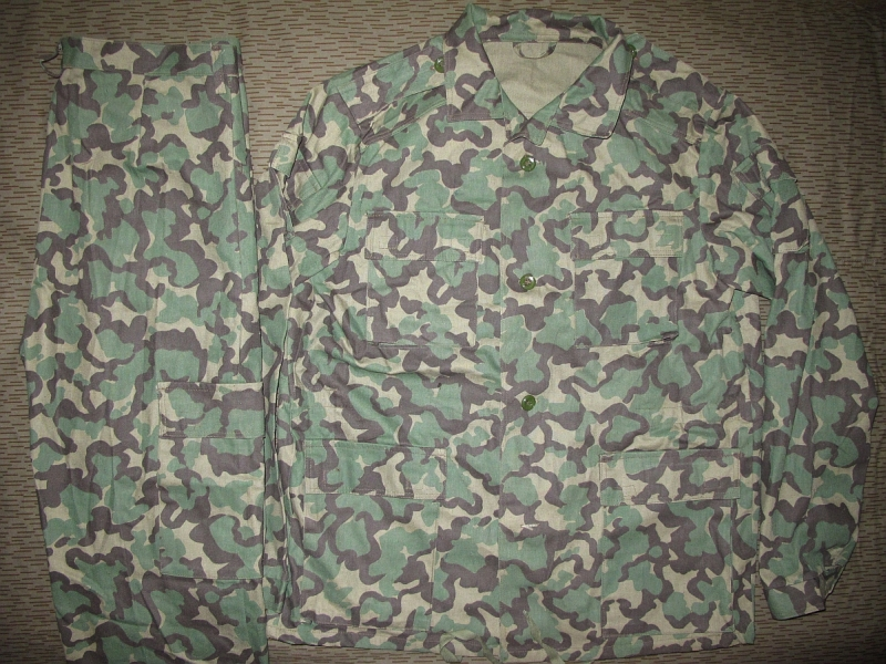 camouflage Picture1260