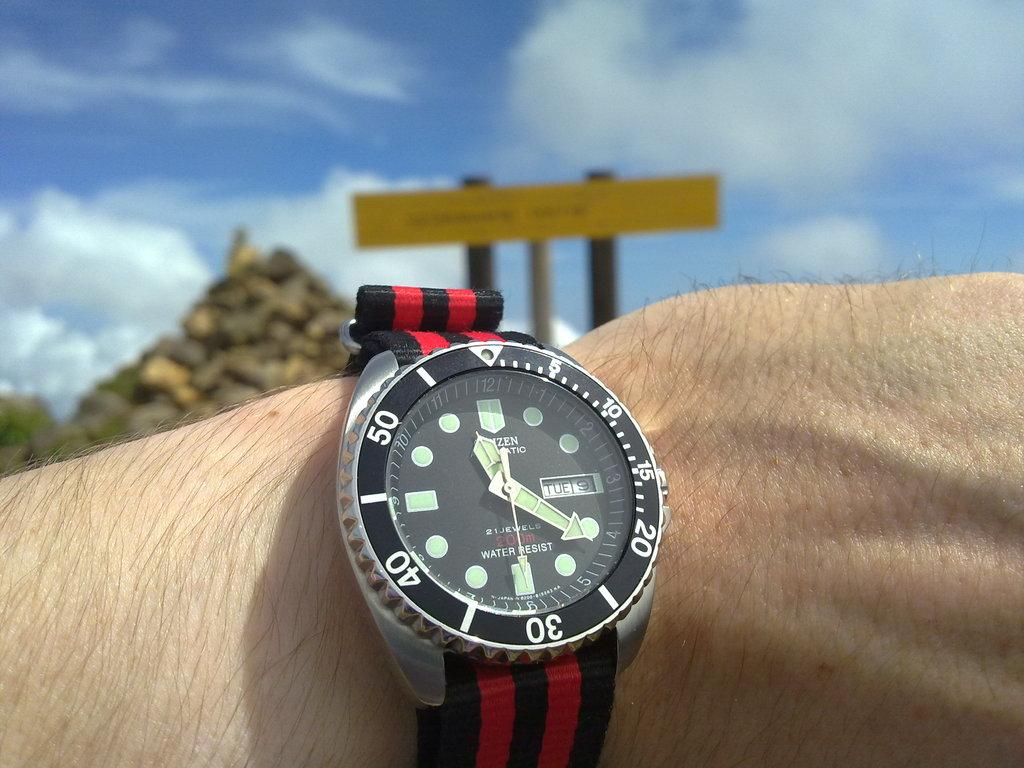 De retour de Guadeloupe, j'ai vu plein de belles choses, même des montres... 09112010749