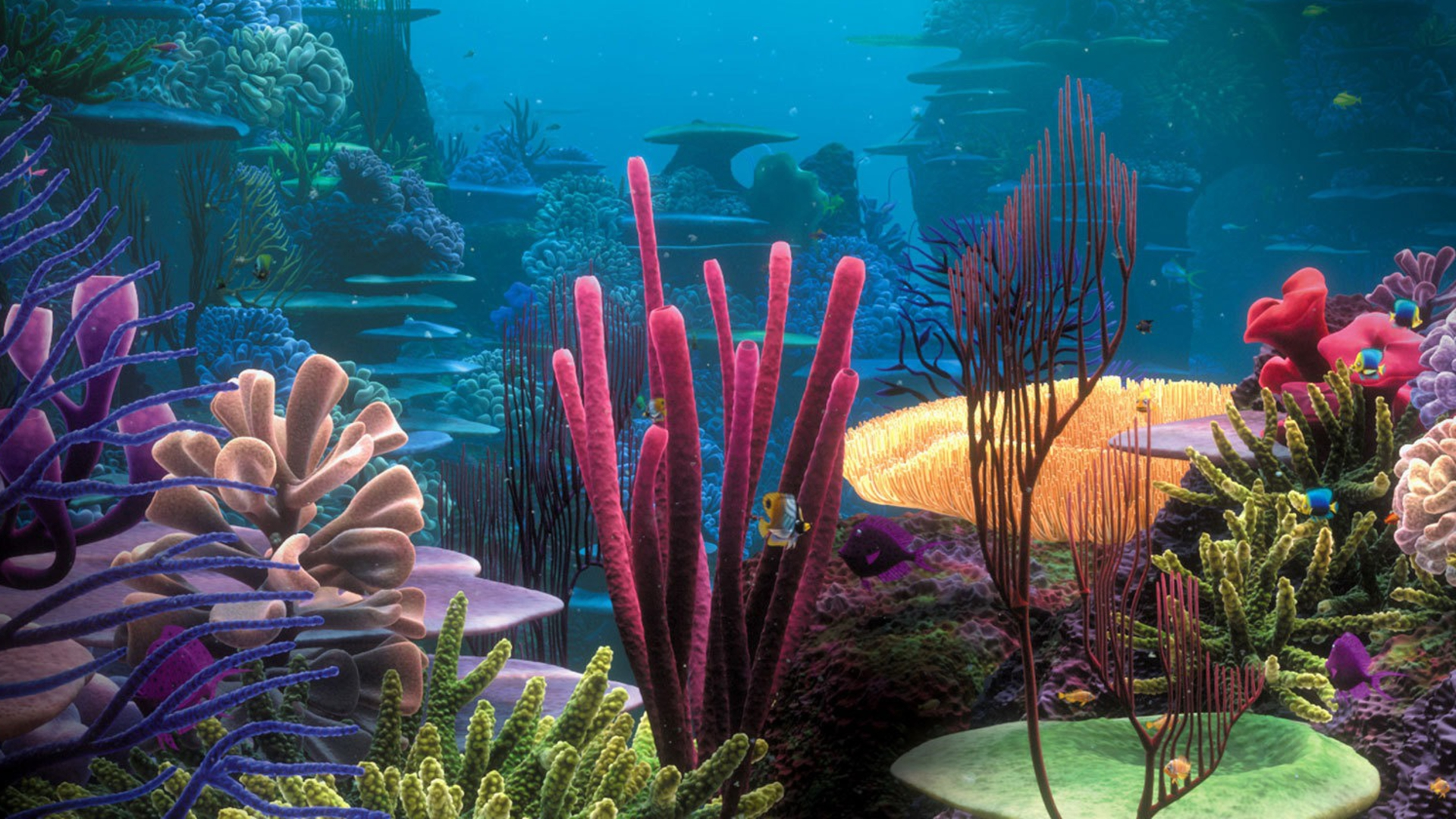 Landscapers Wallpapers - Page 3 Lifeincoralreef297
