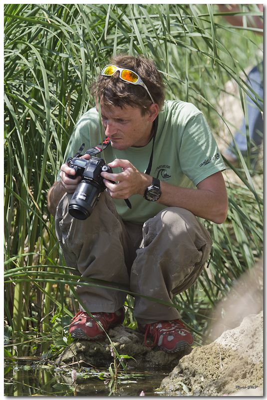 Photos de la Rencontre Macro Papillons & Libellules du Sud 2011 (21 & 22 Mai) - Page 24 Jp062071024