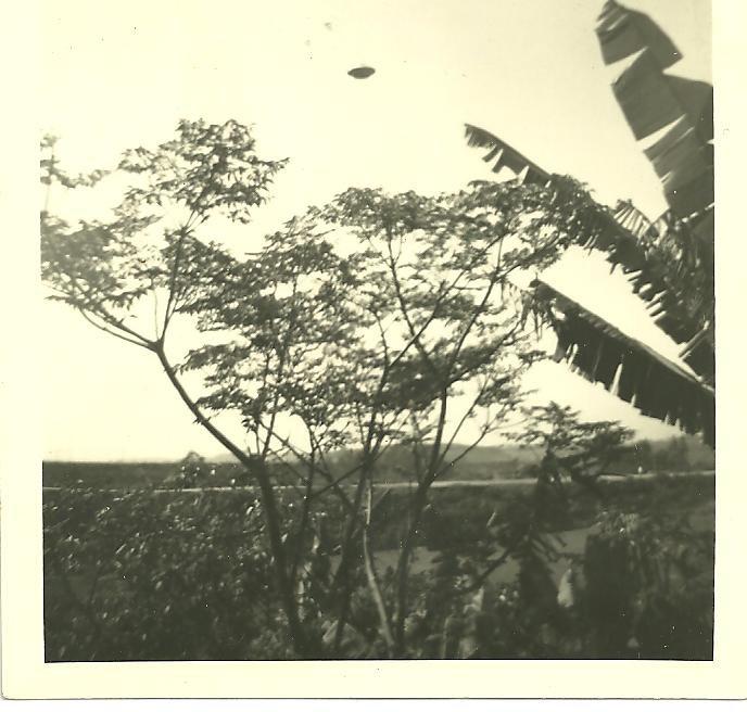 Photo d'un OVNI au Brésil, fin année 70 Tumblrmitd82hz0d1rztkj8