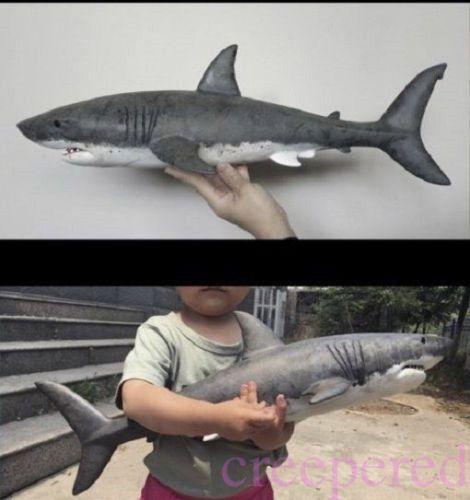 Shark arrived today...pics 25pt4B