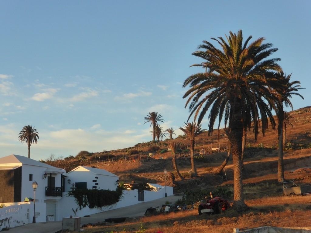 DYLAN EUROPA 2015 y.... lo que venga.....DESERT TRIP 2016.....NOBEL DE LITERATURA....... Still On The Road - Página 2 3TMrR8