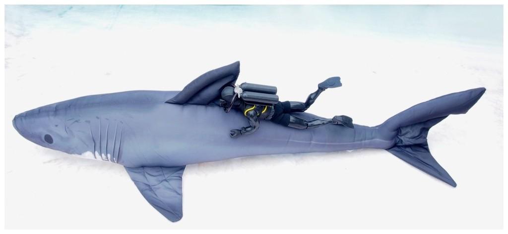 It's a Bigger Shark! FqO5QG