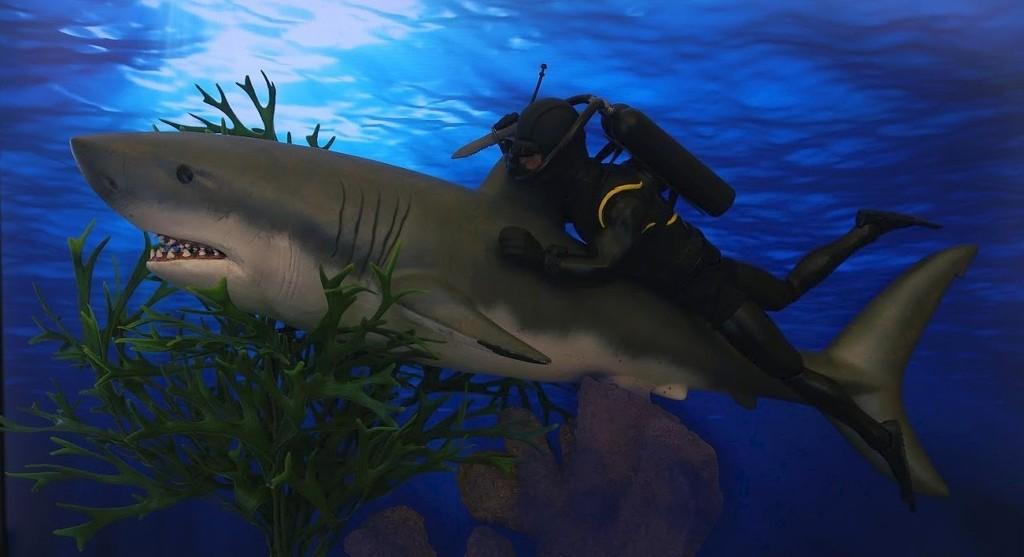 It's a Bigger Shark! PXVyv6