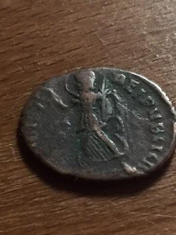 Nouvelle demande d'identification. Lot de 10 Romaines ... UD4hCa