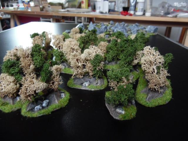 Zones rocheuses et buissons par BGs et earlinger. YN0e1e