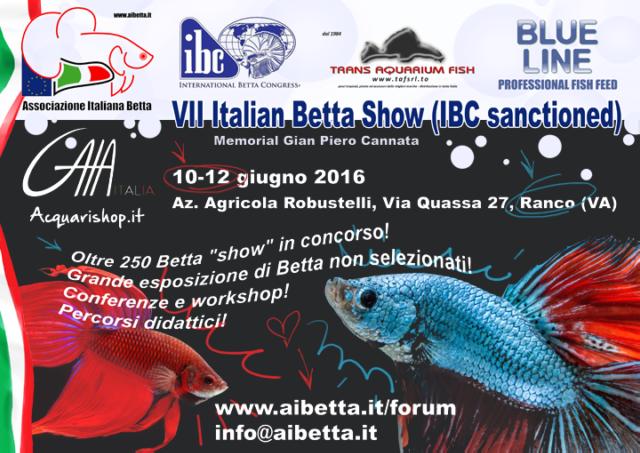7th Italian Betta Show - 10-12 june 2016 - Ranco (VA) IBC OV68Pz