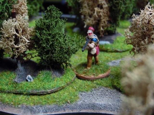 Zones rocheuses et buissons par BGs et earlinger. A5igCm