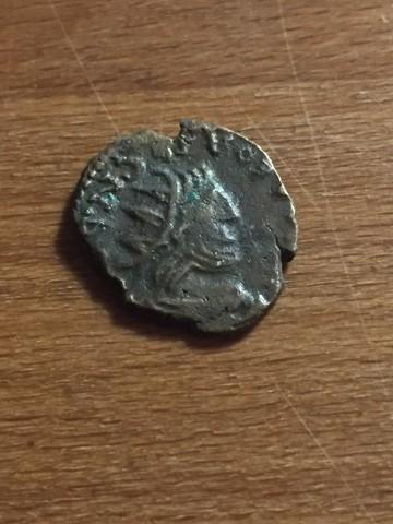 Nouvelle demande d'identification. Lot de 10 Romaines ... IDlpiK