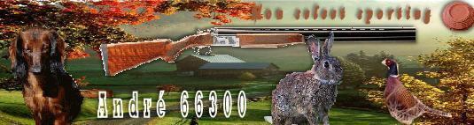 Armes de poing SHQJ6E