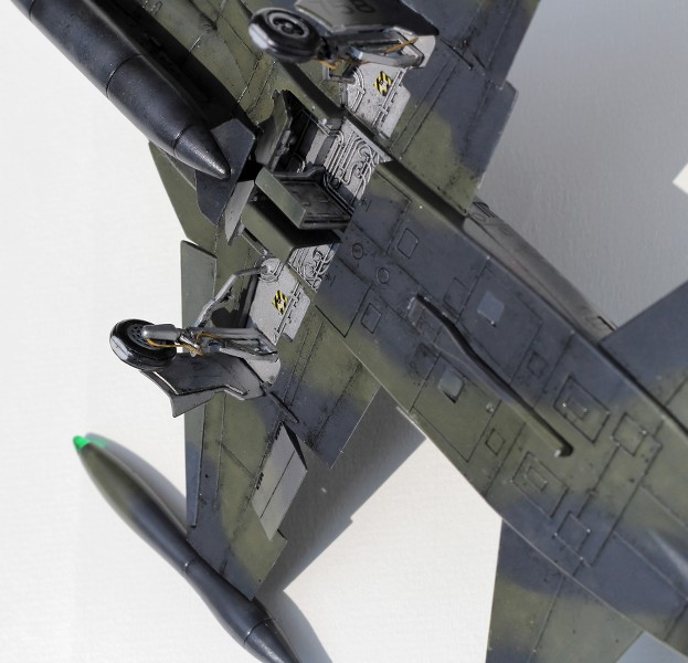 tiger - CF-5A TIGER HOBBIES 1/48 V2FtCO