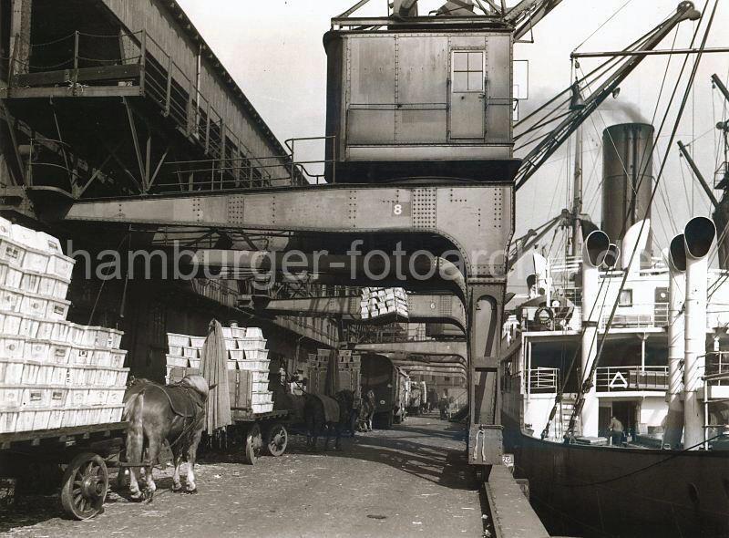 Grande grue 250 t port de Hambourg et Bismarck Revell au 1/350 WgPa6U