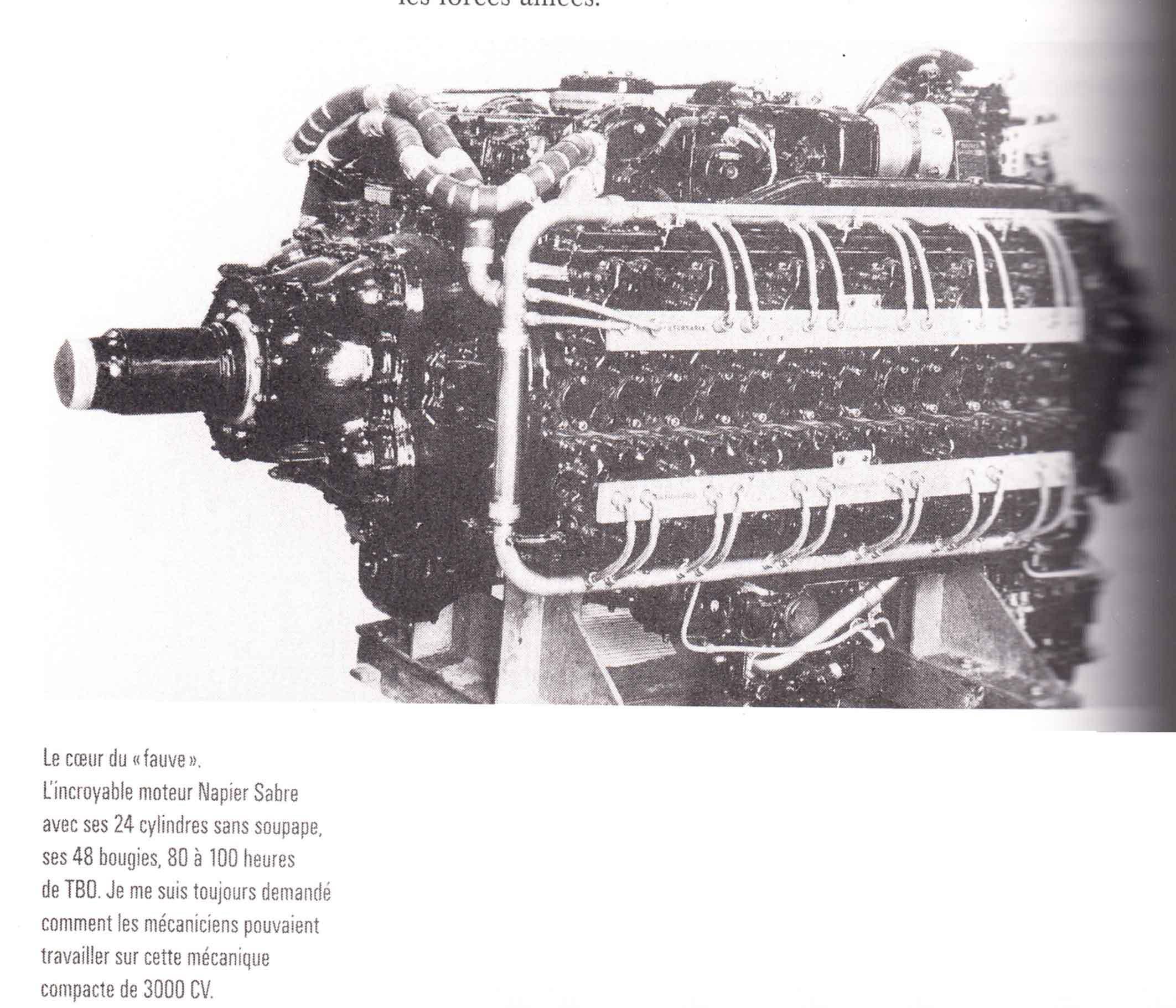 Hawker Tempest Special Hobby au 1/32ème LQs0MK