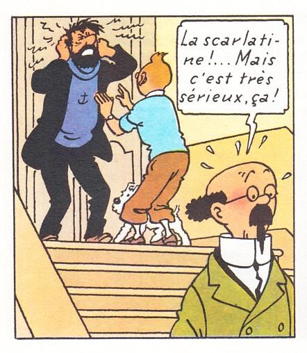 Le Château de Moulinsart, 1/60 scratch par migou31 - Page 6 2YJ4bx