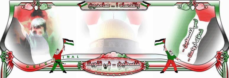 منتديات قلب فلسطين