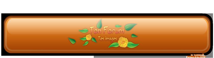 FORUM TP VCM