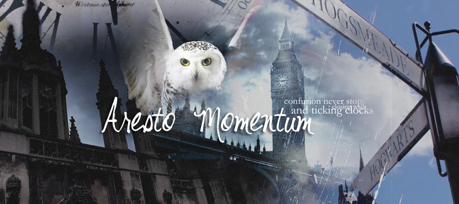 Rol de Harry Potter