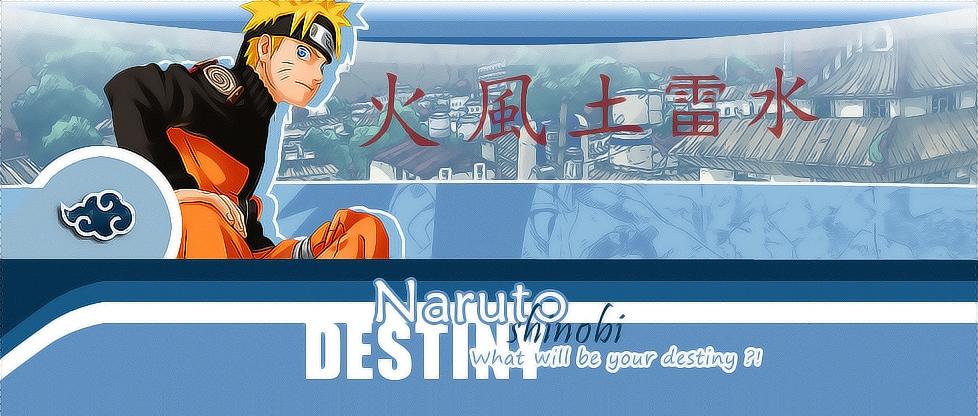 Naruto Shinobi Destiny