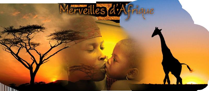 Forum Gabon