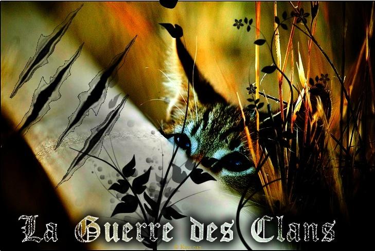La guerre des clans A new beginning