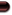 créer un forum : Pandore I_vote_rcap
