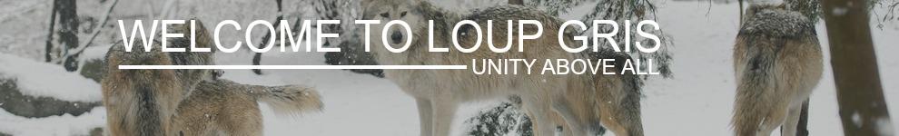 Log in I_logo